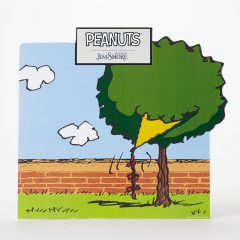 Peanuts Backer Card Displayer